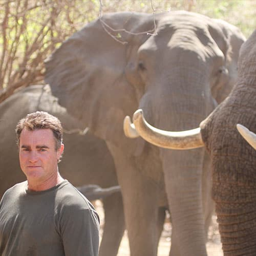 nick-murray-elephant-bushlife-safaris
