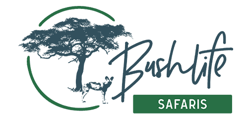 Bushlife Safaris