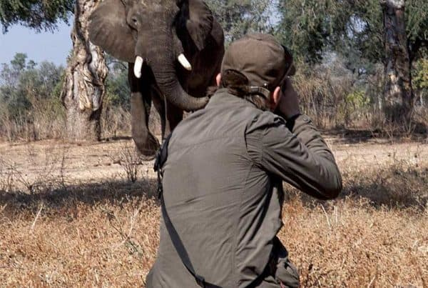 Andy Skillen taking elephant shot