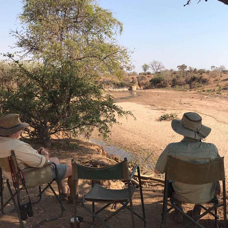 Chitake Springs Bushlife Safaris watching wildlife