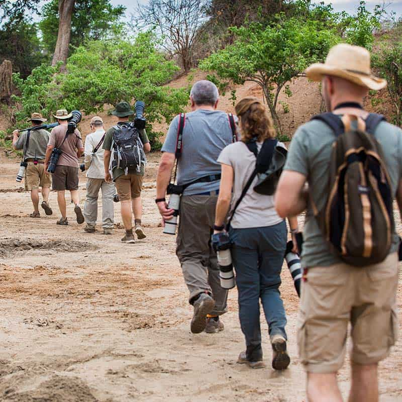 Vundu Camp Bushlife Safaris Walking Safaris
