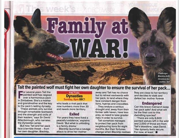 Dynasties News 28th Nov 1