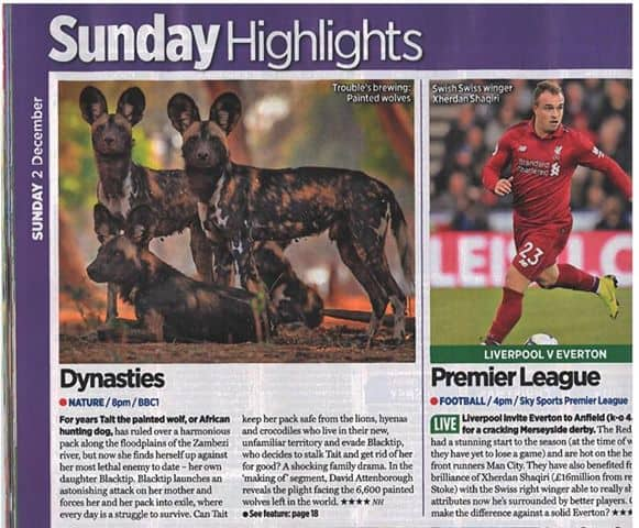 Dynasties News 28th Nov 4