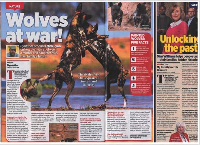 Dynasties News 28th Nov