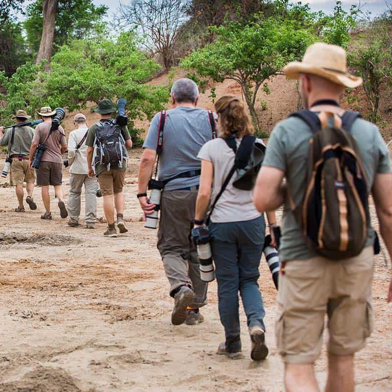 Chitake Bushlife Safaris Walking Safaris