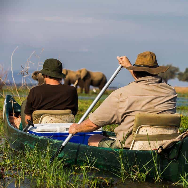 Ruwesi Canoe Trail Bushlife Safaris Nick Murray elephant
