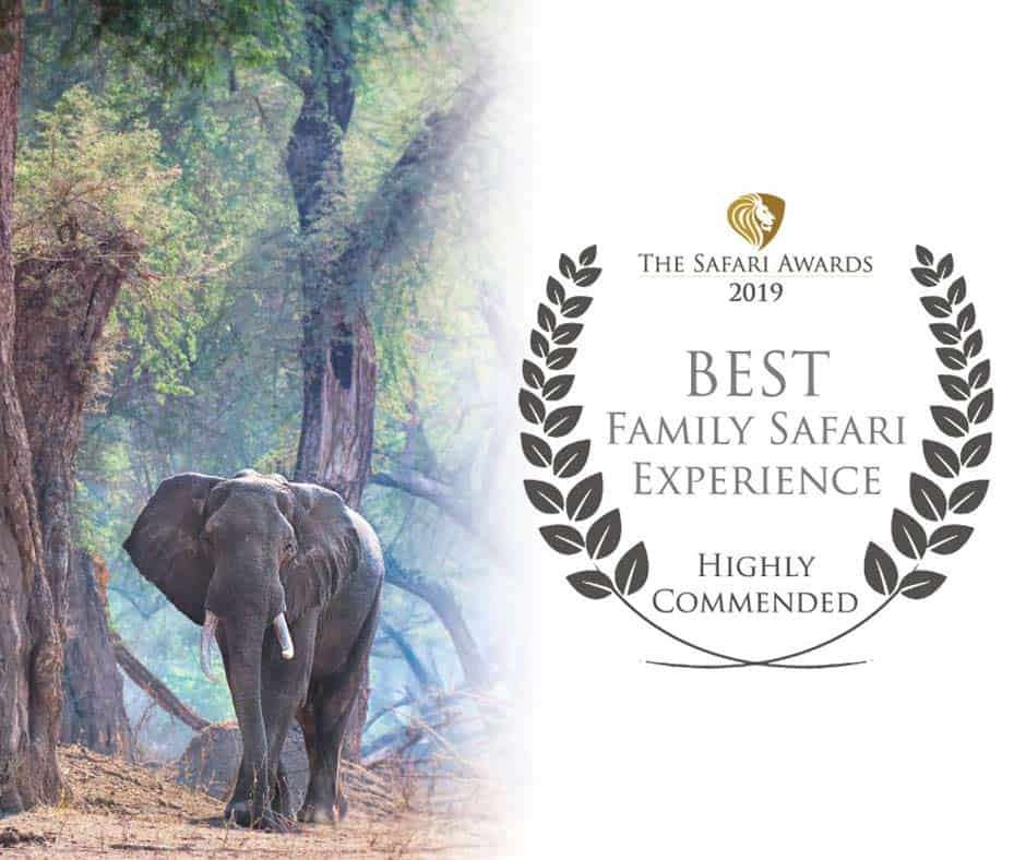 Bushlife Safaris 2019 Best Family Safari Experience Highly Recommended