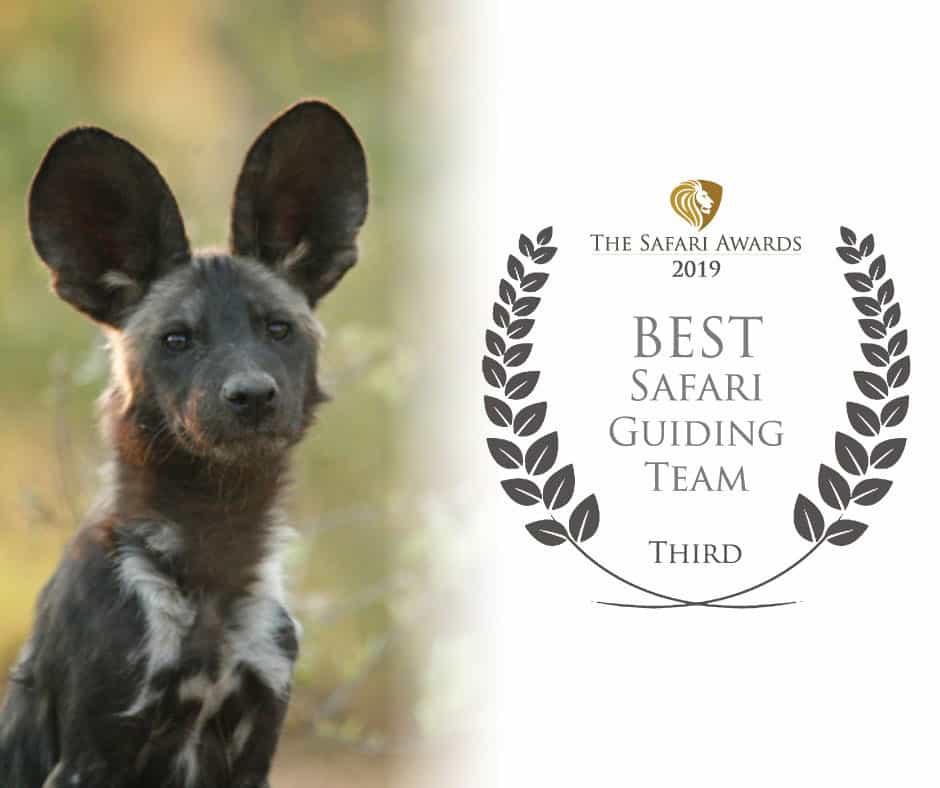 Bushlife Safaris 2019 Best Safari Guiding Team Third Place