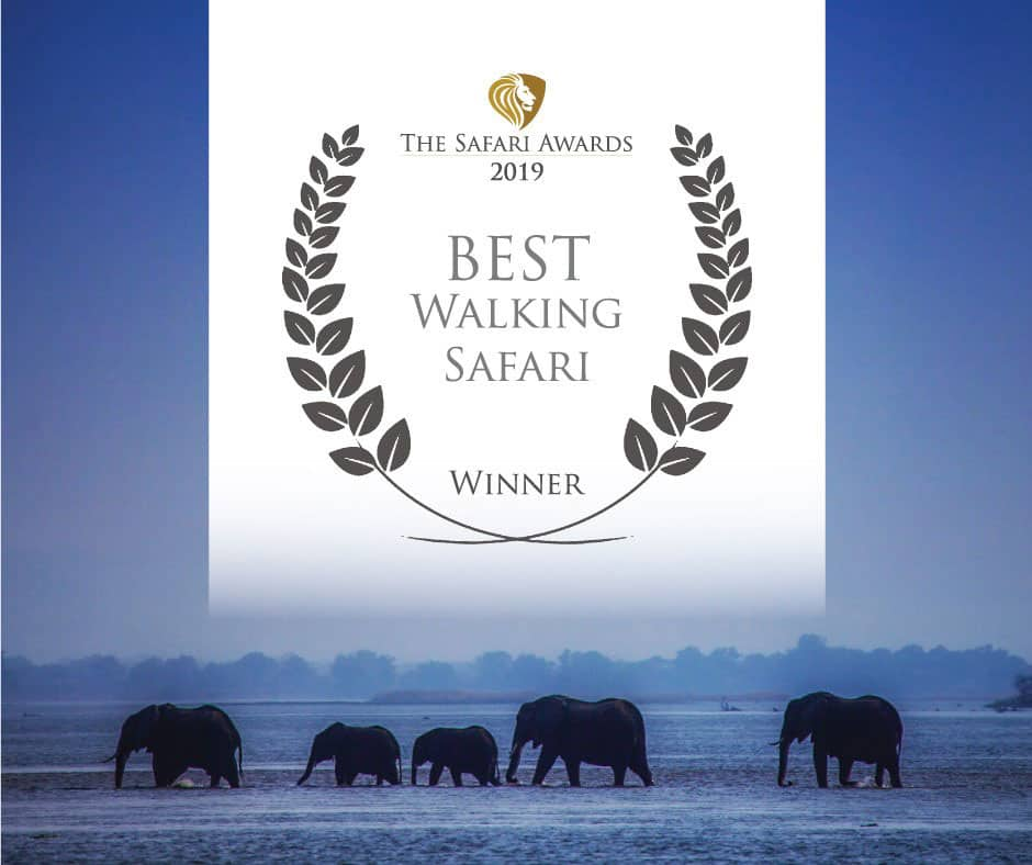 Bushlife Safaris 2019 Best Walking Safari Winner