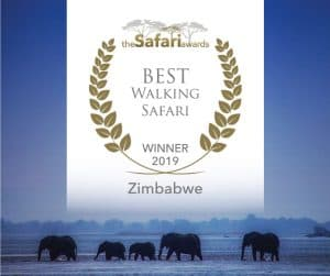 Bushlife Safaris 2019 Best Walking Safari