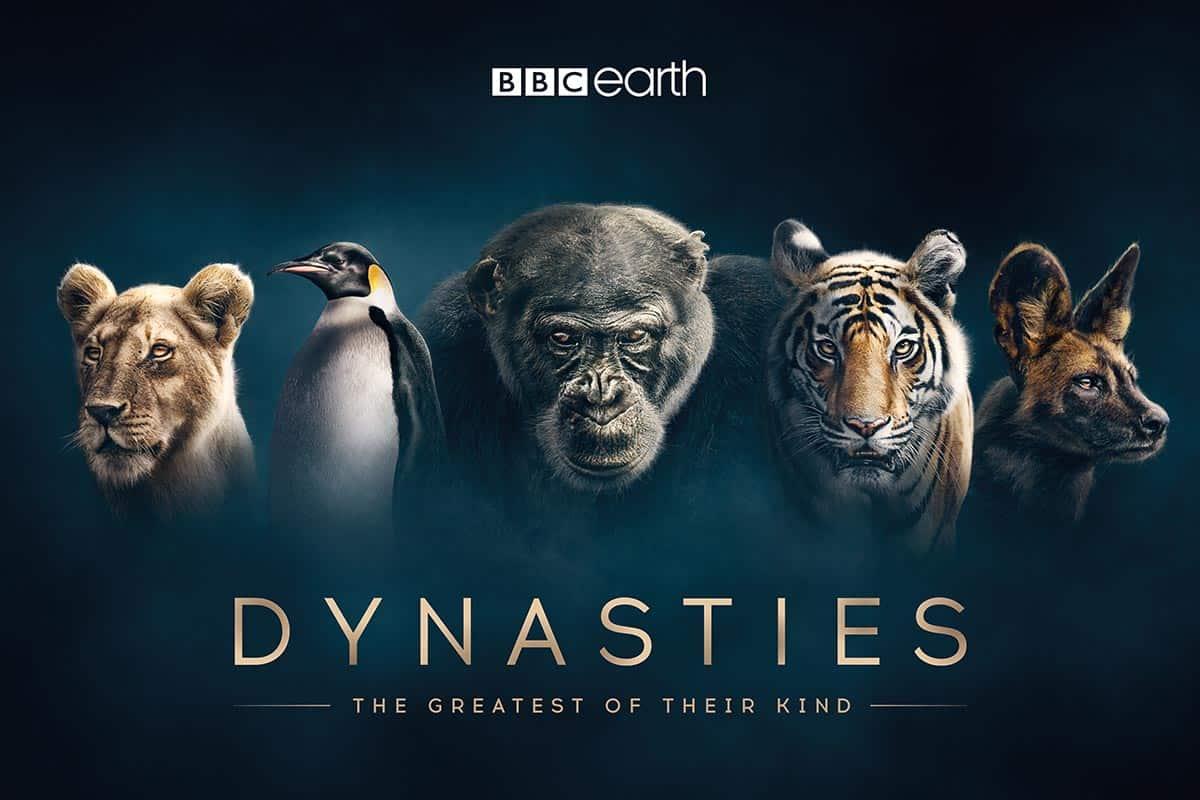 Dynasties hero